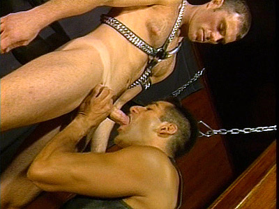 Gay cub Max Sloppy Blowjob